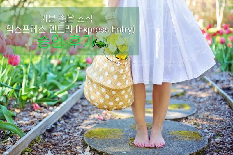 barefoot-basket-blooming-413707.jpg