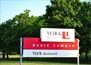 MBA in York University
