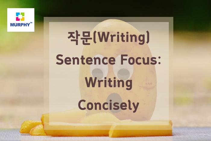 아이엘츠(IELTS) 작문(writing) -Sentence Focus: Writing Concisely -I-