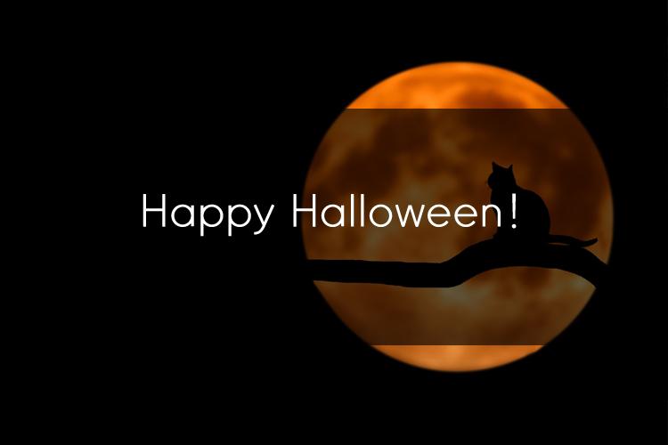 유용한 Halloween  관용어와 표현들