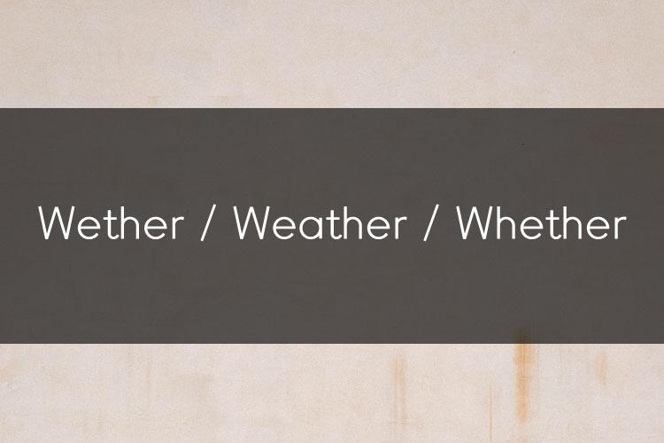 머피의 오늘의 문법! Wether / Weather / Whether