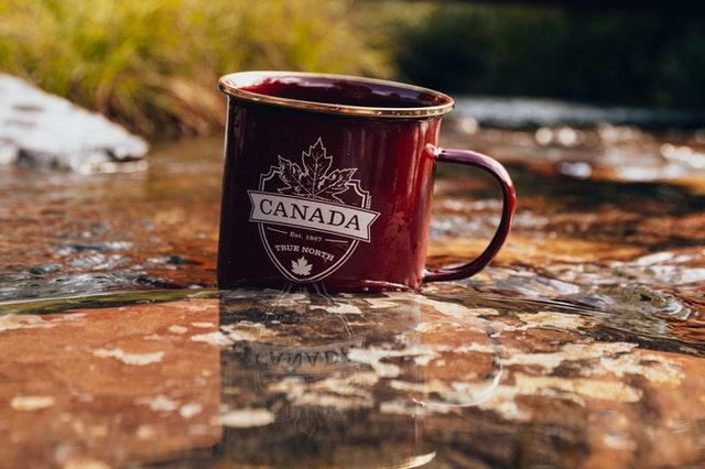[캐나다이민] 국제학생 및 PGWP 발급 관련 이민국 업데이트