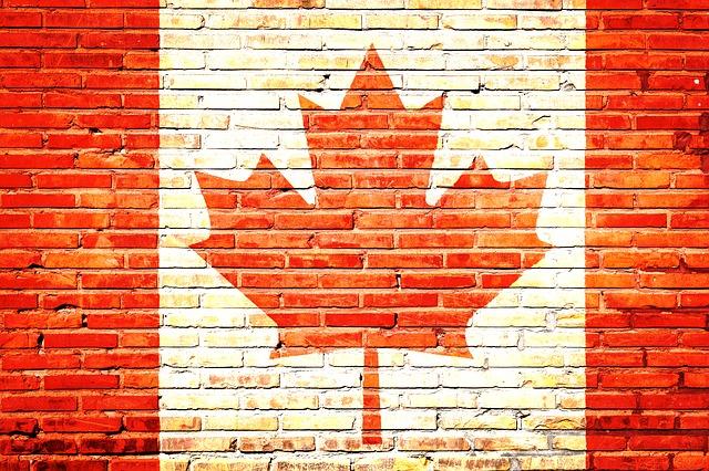 [컨설팅다이어리] 캐나다이민 : TR to PR 패스웨이 프로그램 나만 진전 없는건가?