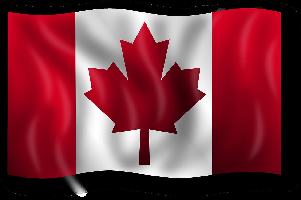 캐나다 이민 : 캐나다 이민 가볼까? 캐나다이민 종류는 어떤게 있나요?..EP.4